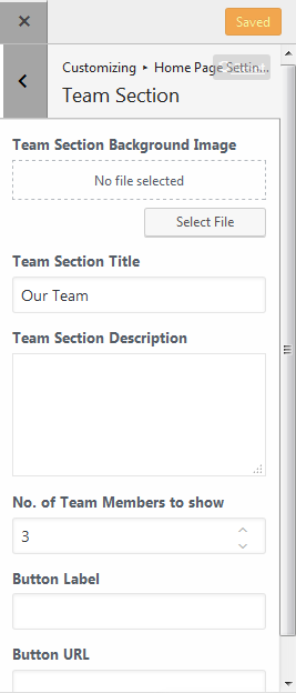 team section.png