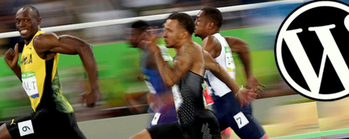 wordpress hack usain bolt.jpg