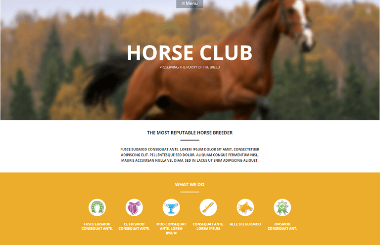 Horse Breed Care