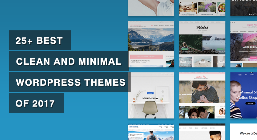 25+ Best Clean and Minimal WordPress Themes of 2017