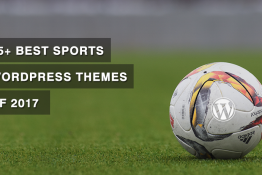 Best Sports WordPress Themes