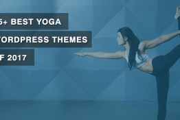 Best Yoga WordPress Themes