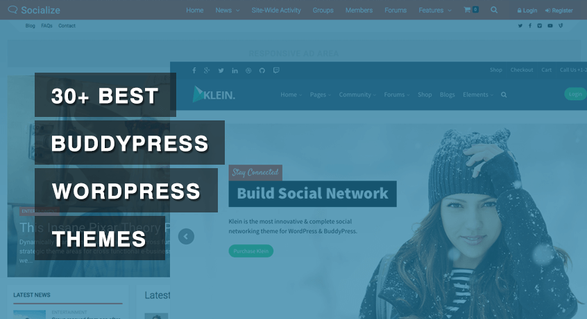 30+ Best BuddyPress WordPress Themes