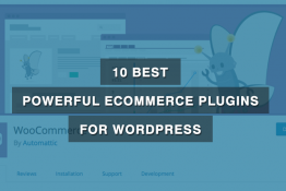 Best Powerful Ecommerce Plugins for WordPress