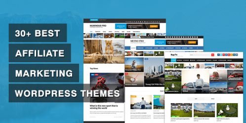 30+ Best Affiliate Marketing WordPress Themes