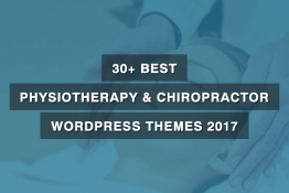 Best Physiotherapy & Chiropractor WordPress Themes 2017