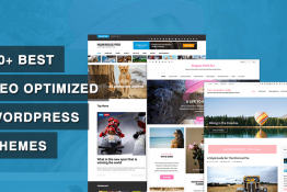 Best SEO Optimized WordPress Themes