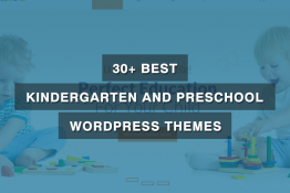 best kindergarten preschool WordPress themes