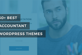 best accountant WordPress themes