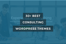 best Counsulting and Conuselor WordPress themes