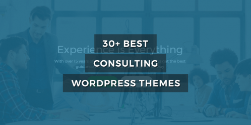 30+ Best Consulting WordPress Themes