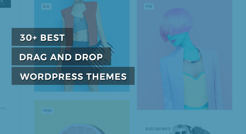 best drag and drop WordPress themes