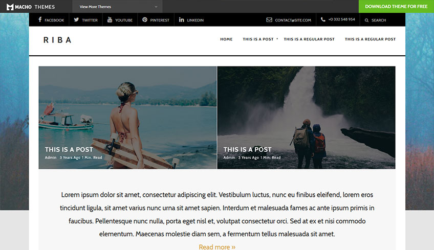Riba-Lite Free WordPress Theme