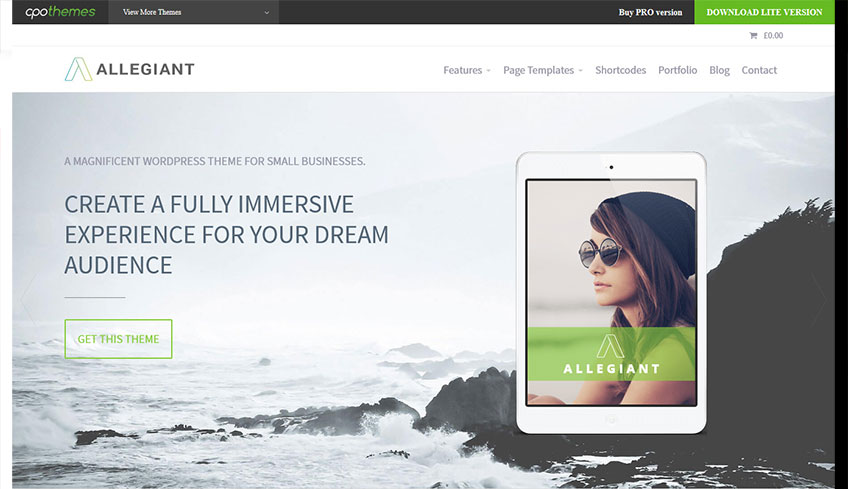 Alegiant Free WordPress Theme