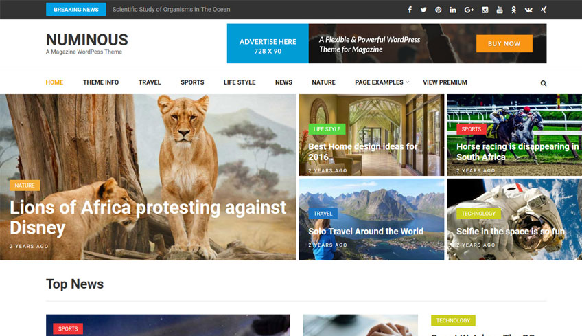 numinous free wordpress theme